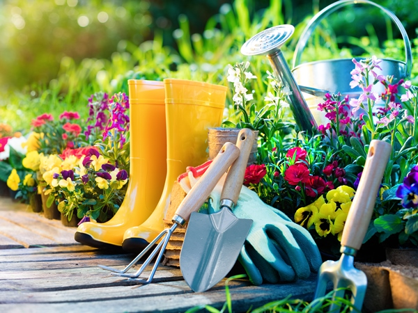 Gardening Tools for Arthritis