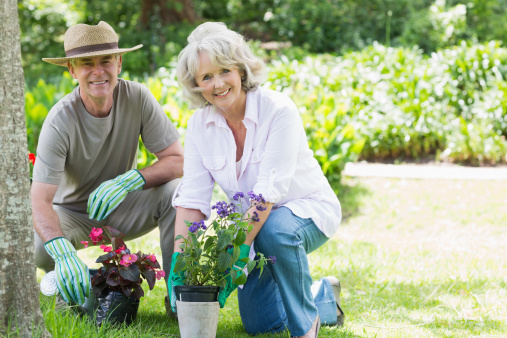 Easy Gardening with Arthritis