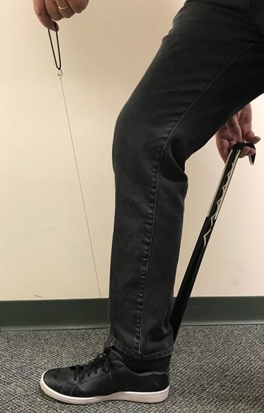Shoe-Leash-Shoe-Horn-Dressing-Aid